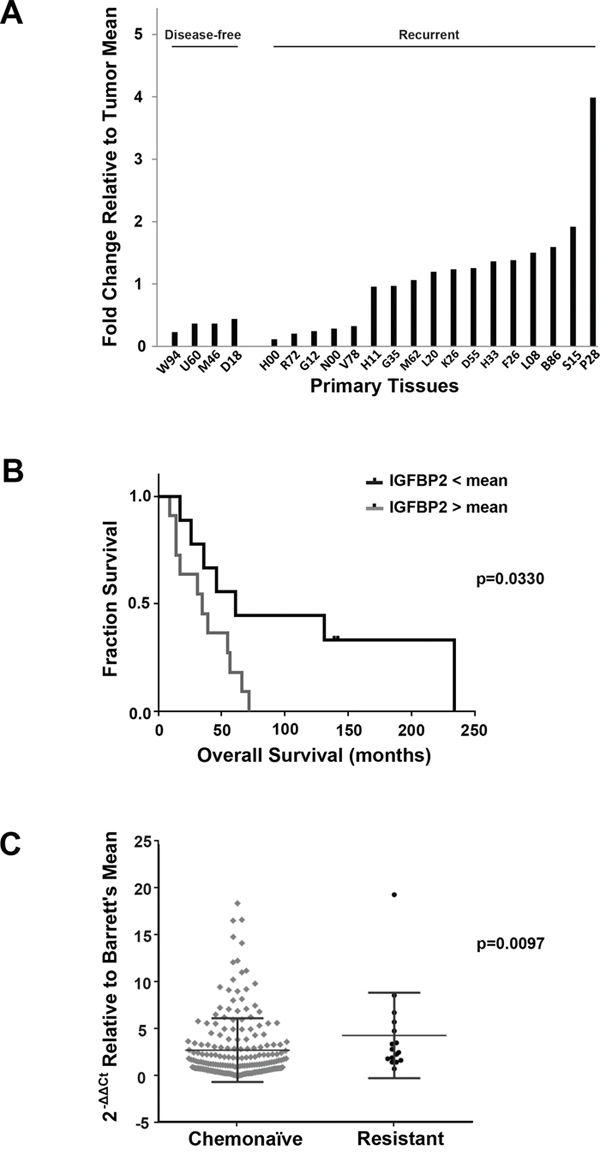 Association of IGFBP2 expression with chemoresistance in EACs.