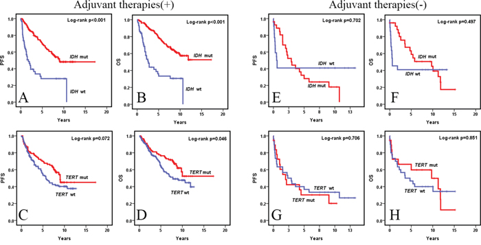 Kaplan-Meier survival curves (univariate analysis) of IDH and TERT promoter mutations for OS and PFS in WHO grade II and III diffuse gliomas with and without adjuvant therapies.