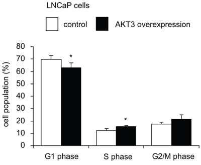 Overexpression of AKT3 promoted cell cycle progression in LNCaP cells.