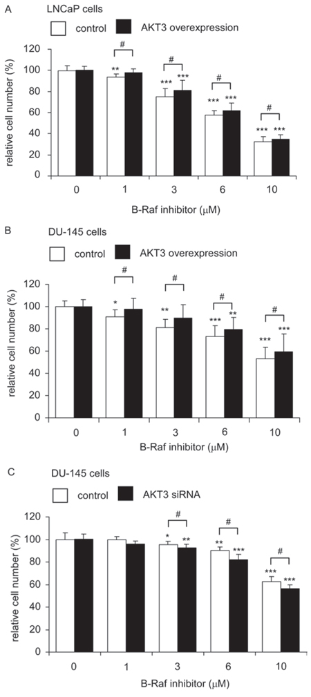 LNCaP and DU-145 cells overexpressing AKT3 was more resistant to B-Raf inhibitor treatment while siRNA knockdown of AKT3 increased sensitivity of DU-145 to B-Raf inhibitor treatment.