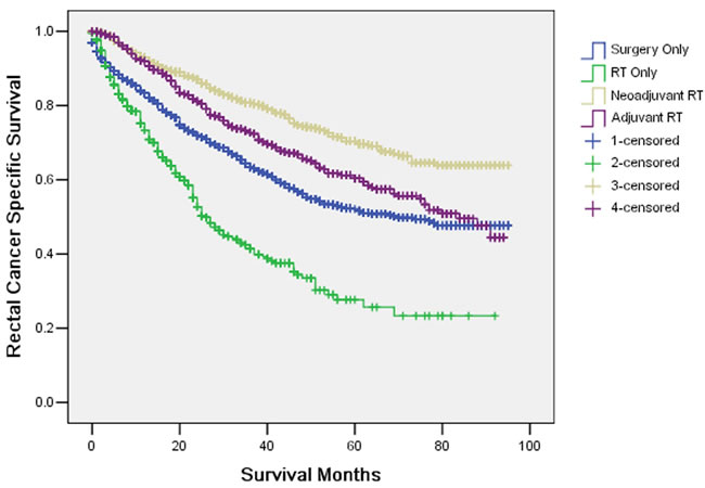 Survival curves in rectal patients according to four subgroups.