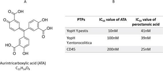 ATA as YopHs inhibitor.