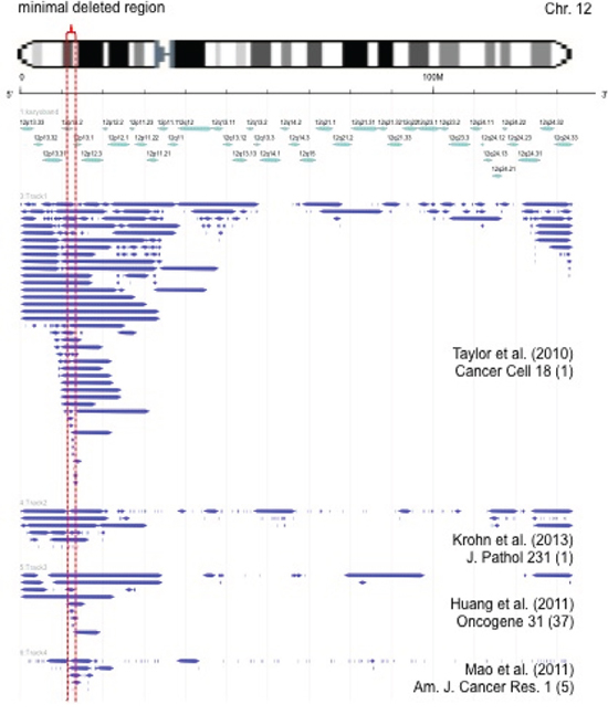 Size and extension of chromosome 12p deletions detected in published microarray-based copy number studies [6, 55–59].