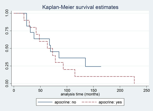 Kaplan Meier curve for overall survival according to apocrine differentiation.