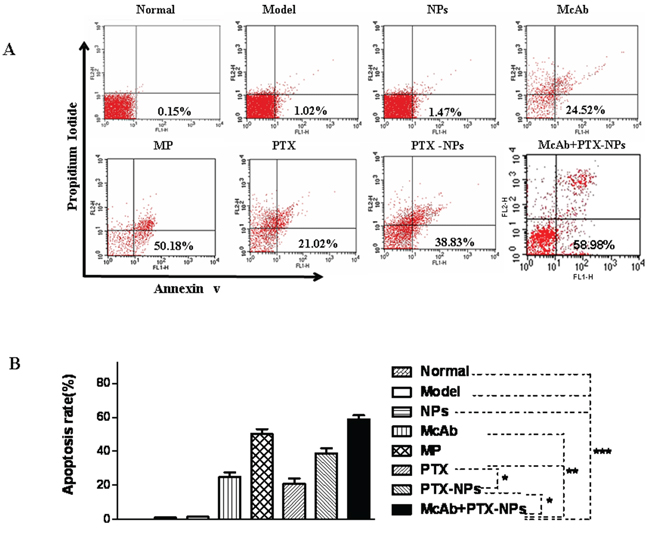 Strong apoptosis induced by McAb+PTX-NPs in BMMCs isolated from MM mice.