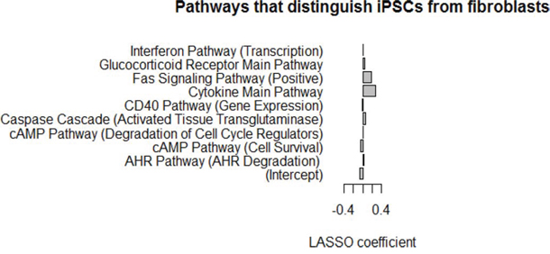 LASSO model using PAS scores can discriminate between iPSCs and fibroblasts.