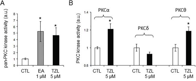 Tonantzitlolone is a PKC activator.