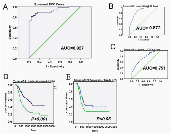 Diagnostic and prognostic values of exosomal miR-21 levels in glioma patients.
