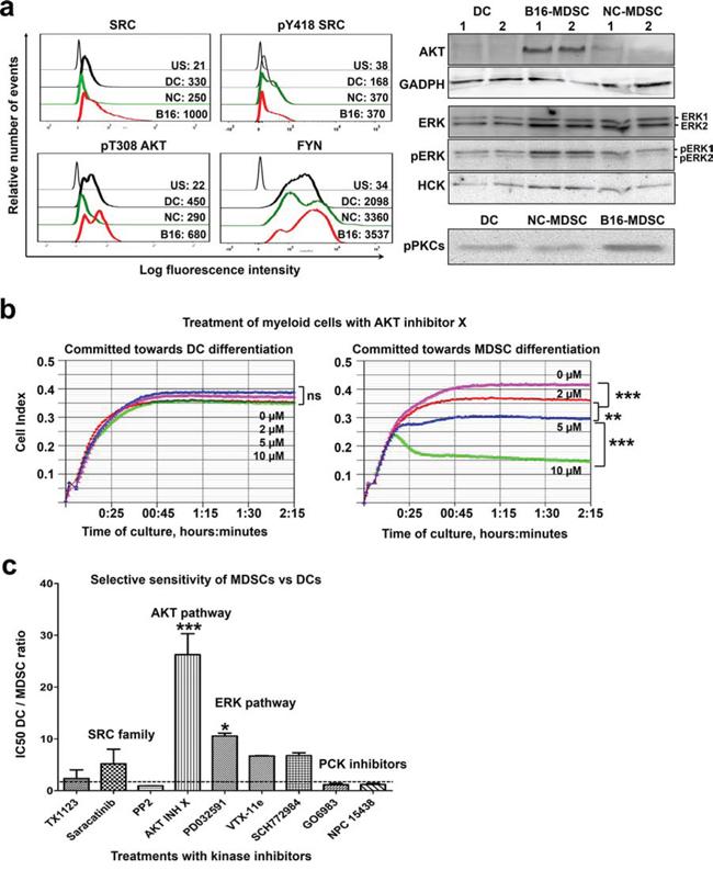 A kinase signature discriminates MDSCs from DCs.