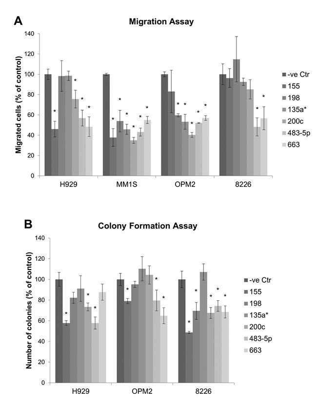 Migration and colony formation assay measuring the effect of miRNA mimic on migration and colony formation of MM cells.