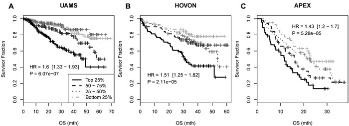 Survival association of the 33-gene signature in UAMS, HOVON and APEX myeloma datasets.