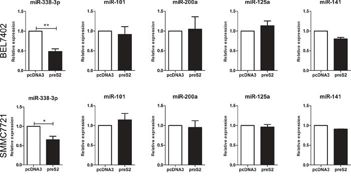 preS2 downregulates the expression of miRNA-338-3p.