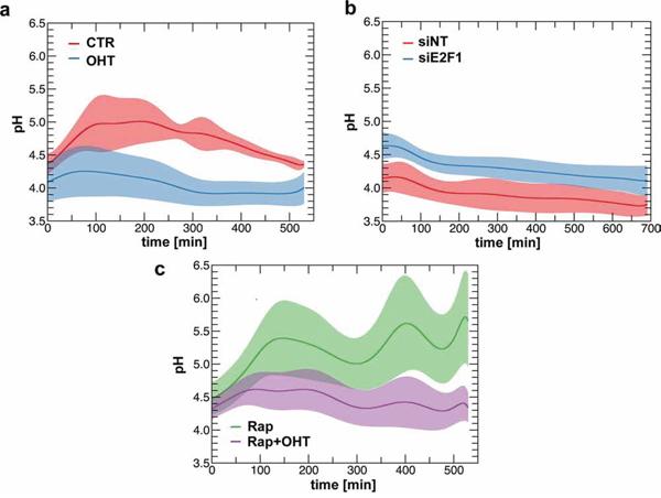 E2F1 regulates intra-lysosomal pH.