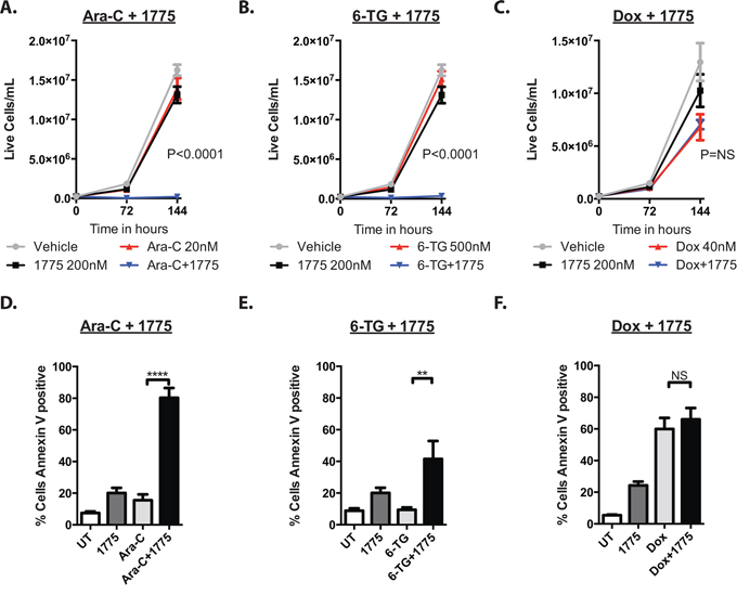 AZD1775 impairs the proliferative capacity and enhances apoptosis of leukemia cells after exposure to cytarabine and 6-thioguanine, but not doxorubicin.