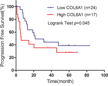 Kaplan–Meier plot of progression free survival (PFS) is shown according to COL6A1 expression.