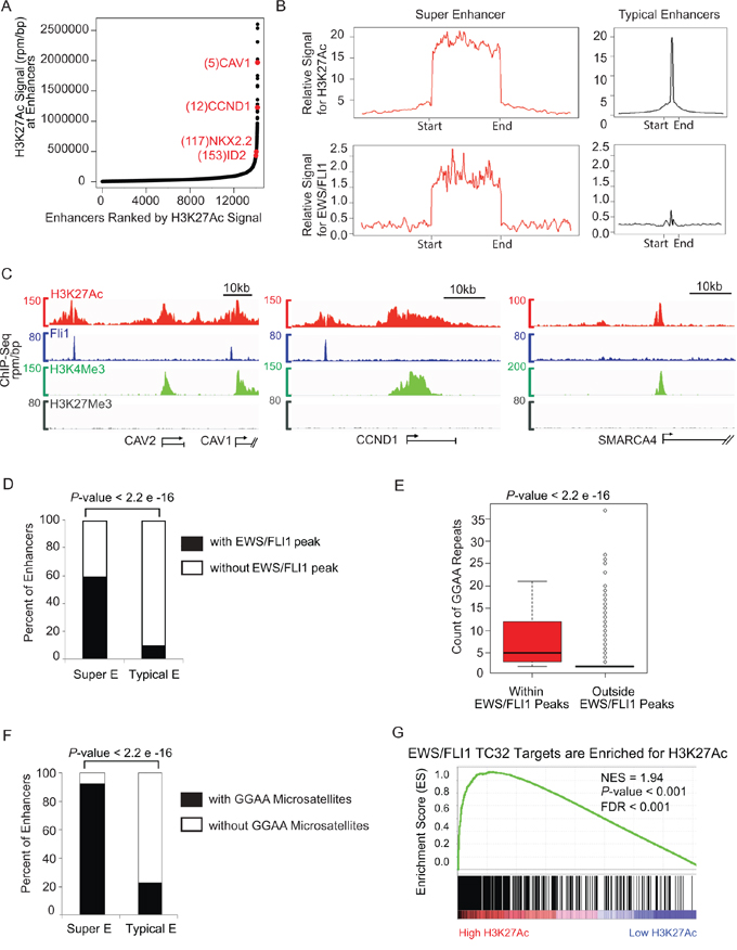 Super-enhancer profiling in TC32 identifies CCND1 and other important EWS/FLI1 targets.