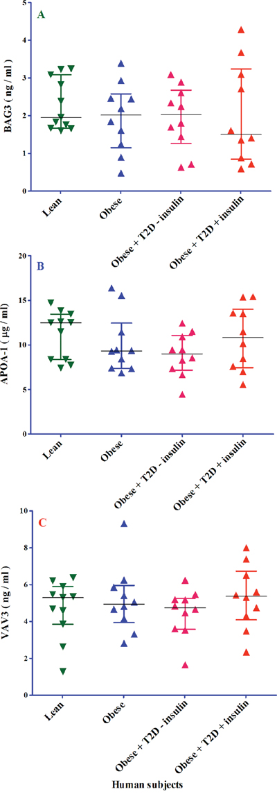 The analysis of BAG3, APOA1 and VAV3 proteins in four different groups of 41 human subjects by ELISA.