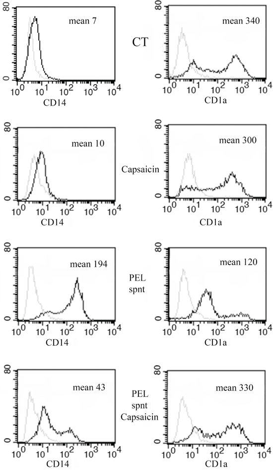 Capsaicin counteracts the inhibition of monocyte-differentiation induced by PEL released factors.