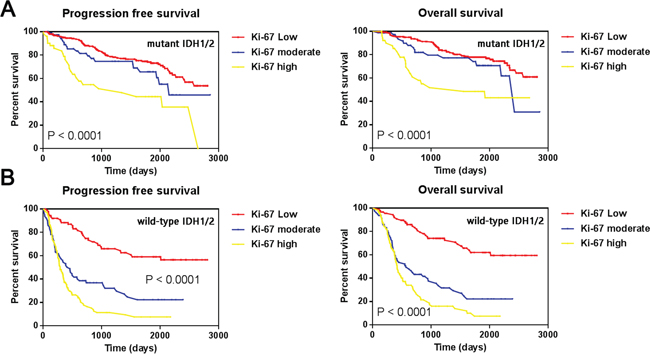 Kaplan-Meier estimates of survival for all 703 gliomas.