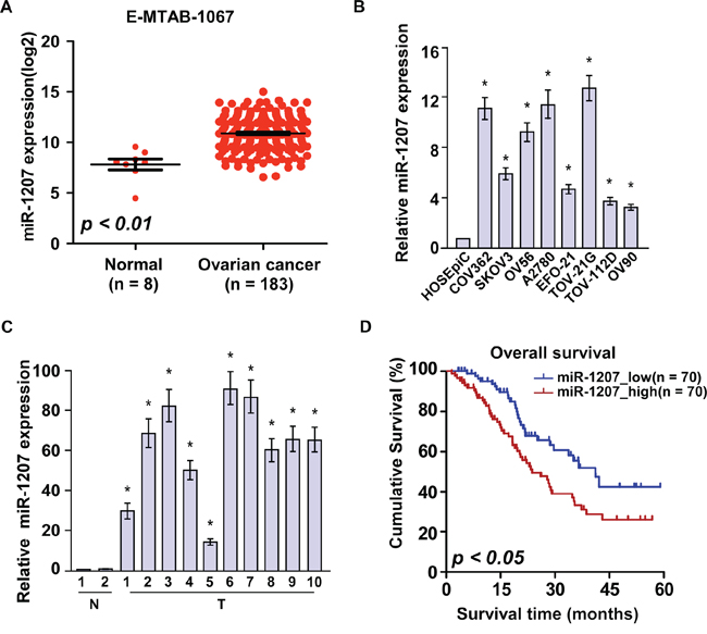 Overexpression of miR-1207 is positively associated with ovarian cancer prognosis.