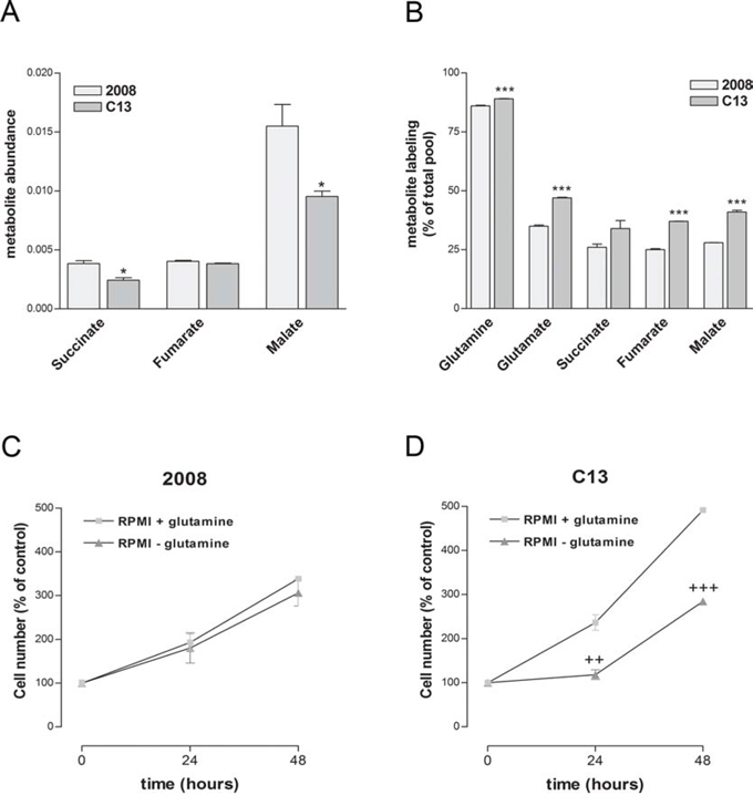 Cisplatin-resistant cells present an increased dependency on glutamine for TCA intermediates biosynthesis.