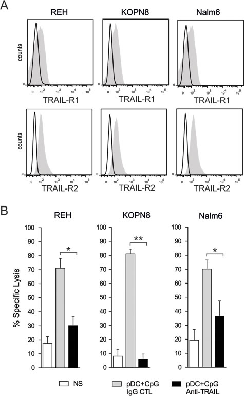TRAIL mediated apoptosis plays a major role in pre-B ALL lysis by activated NK cells.