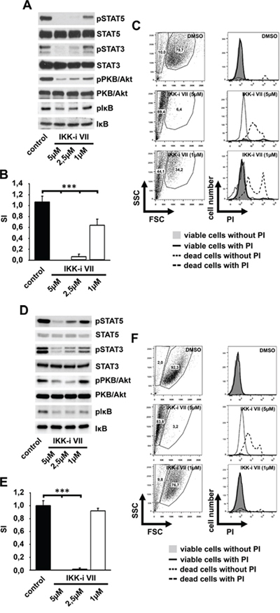 IKK inhibition induces cell death in HMC-1.1 and HMC-1.2 cells.