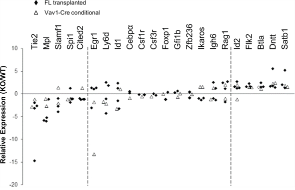 Stat5-deficient HSCs have reduced expression of HSC/quiescence associated genes and increased expression of lymphoid-lineage genes.