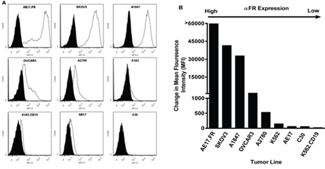 FRα surface expression of human ovarian cancer cell lines by flow cytometry.