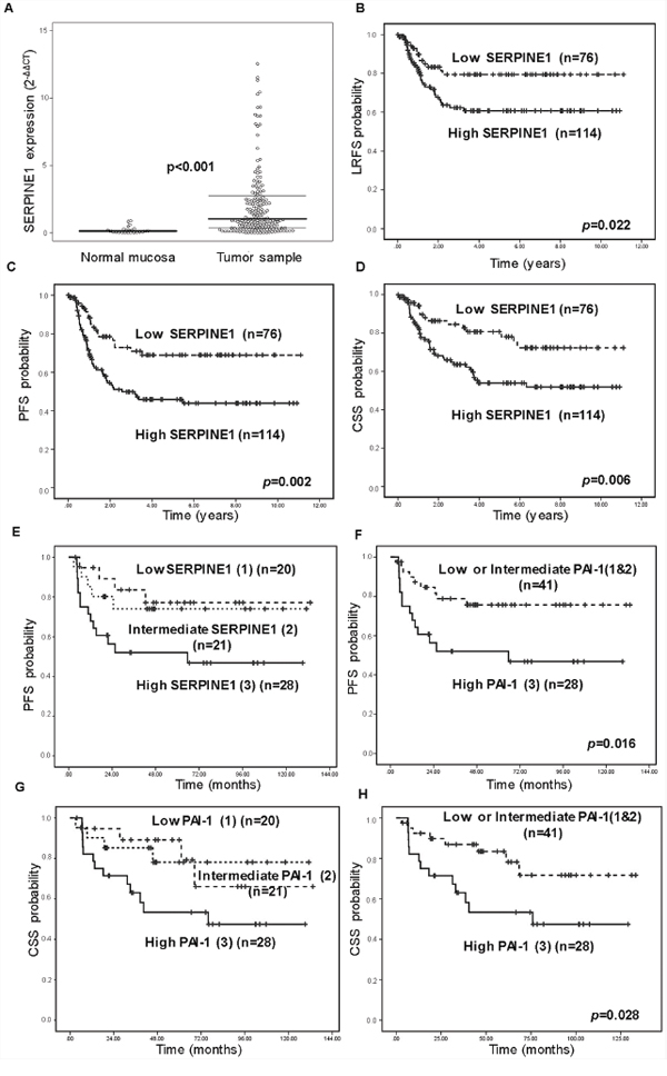 High SERPINE1 expression is associated with poor outcome in patients with head and neck carcinoma in a prospective study.