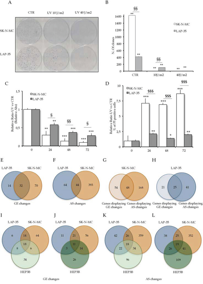 UV light irradiation triggers cytotoxic effect in Ewing Sarcoma cells.