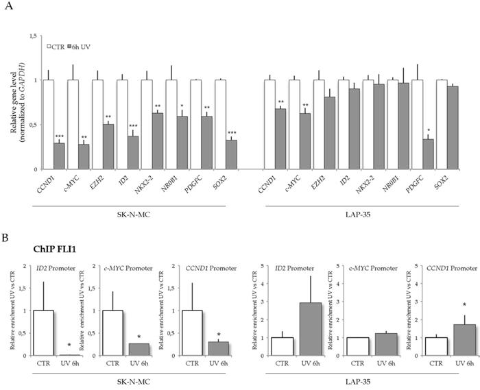 UV light treatment down-regulates EWS-FLI1 target genes in SK-N-MC cells.