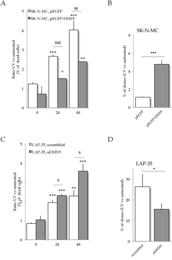 DHX9 expression affects ES resistance to UV light irradiation.
