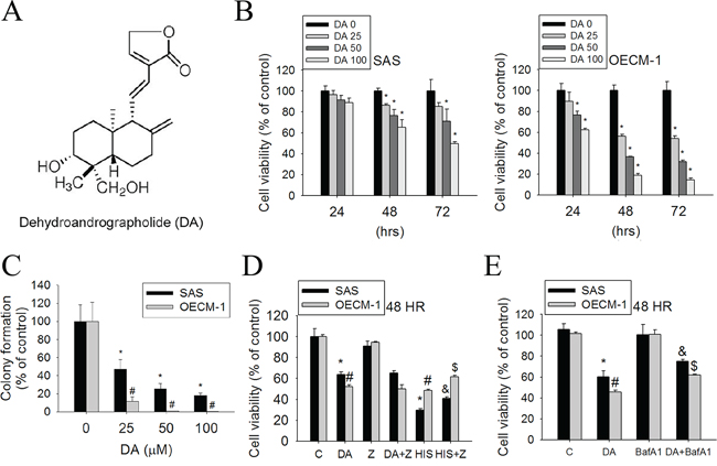 Effect of DA on cell viability in SAS and OECM-1 cell lines.