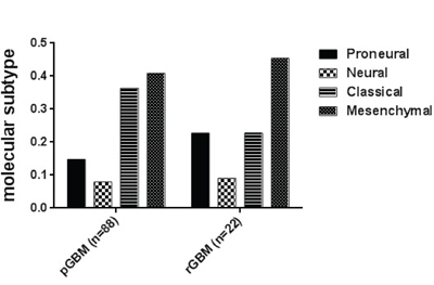 Distribution of molecular subtypes (Proneural, Neural, Classical and Mesenchymal) in primary and recurrent GBM.