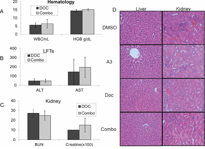 Nude mice were treated with a one-time dose of docetaxel either in combination with 'A3' (10 mg/kg), or with equal volumes of DMSO.