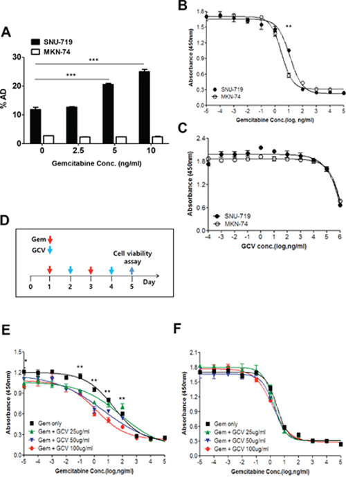 Gemcitabine confers GCV susceptibility on EBVaGC cells.