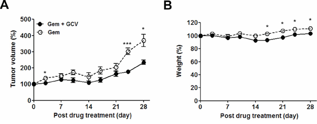 Optimization of gemcitabine-GCV combination treatment in EBVaGC mice.