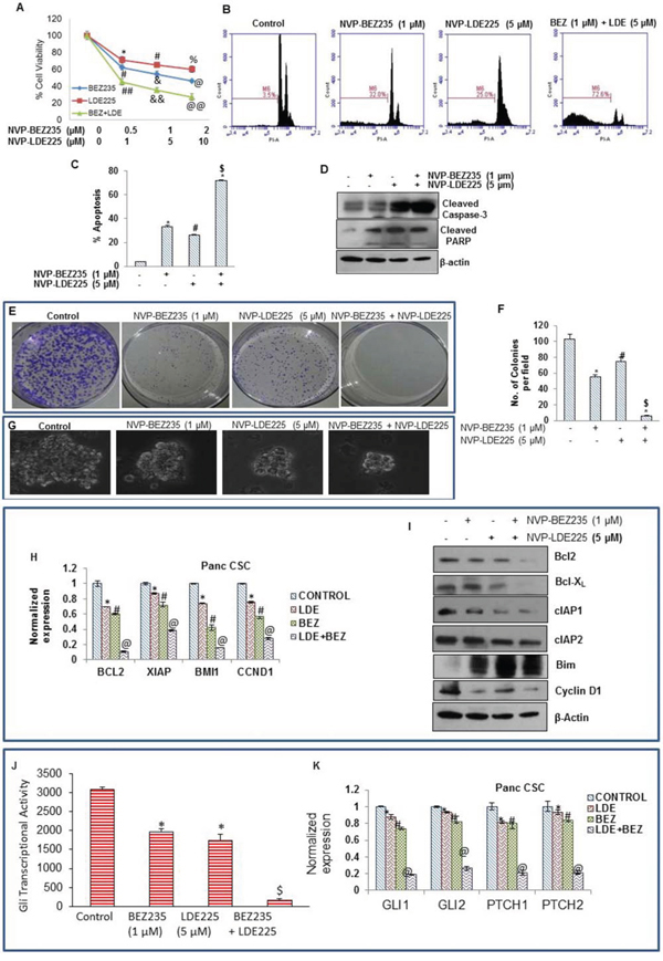 Effect of NVP-LDE-225, NVP-BEZ-235 and their combination on cell viability, apoptosis, and colony and spheroid formation, and protein expression.