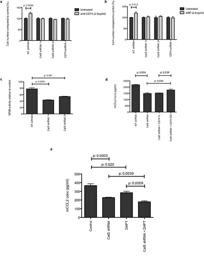 CatS regulation of CCL2 is mediated by CD74.
