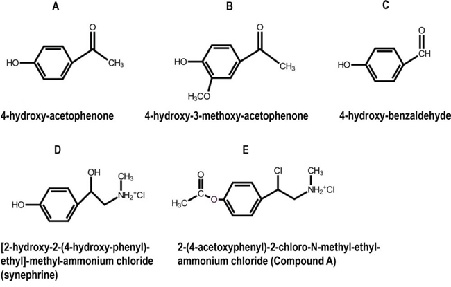 Chemical structures of selected phenolic compounds from S. tuberculatiformis, and their synthetic analog, Compound A.