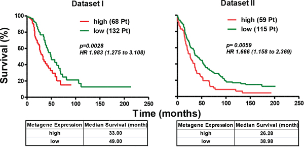 Axl-driven signature identifies the HGEOC patients with poor overall survival.