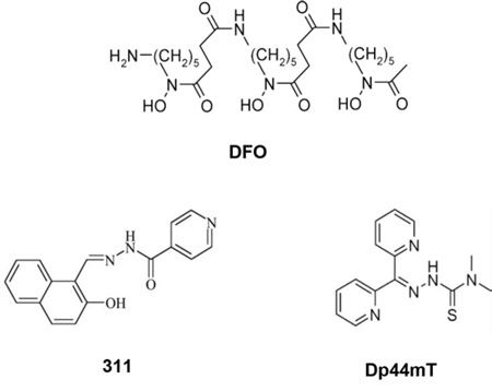 Line drawings of the structures of the chelators: DFO, 311 and Dp44mT.