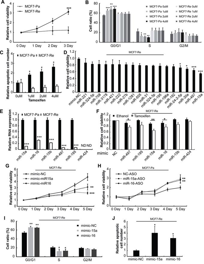 Screening for functional miRNAs in tamoxifen resistance.