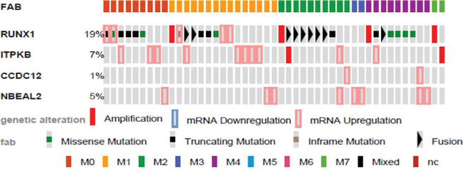 Genetic alterations of identified genes in human AML by FAB.