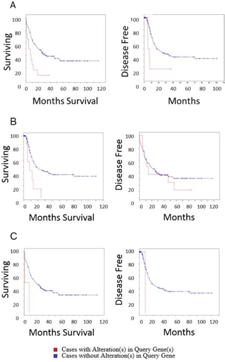 Overall survival and disease free survival analysis of ITPKB, NBEAL2 and CCDC12 in AML.