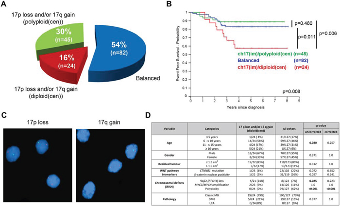 Chromosome 17 defects in HIT-SIOP-PNET4 cohort tumors.