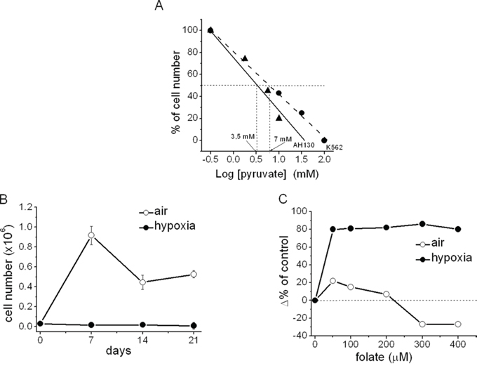 The sensitivity to pyruvate of K562 cells in comparison with AH130 cells. Hypoxic inhibition of K562 cell growth and its removal by folate addition.