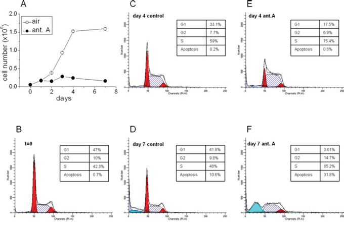 Effects of antimycin A on K562 cell growth and cell cycle distribution.