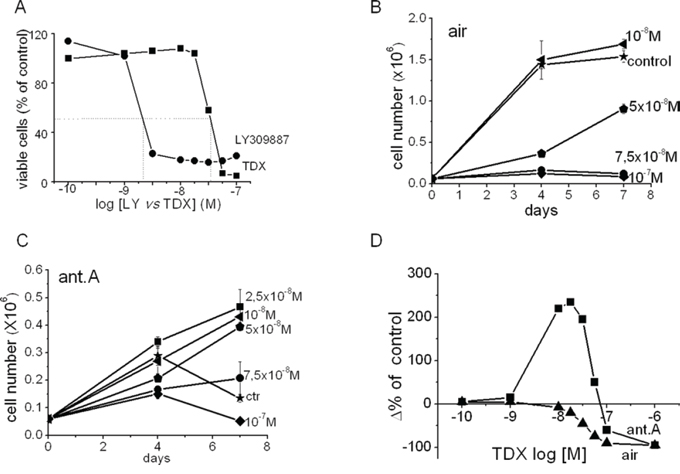 Effects of the inhibition of purine or pyrimidine synthesis in air in the presence or the absence of antimycin A on the time-course of K562 cell number in culture. The raltitrexed paradox.